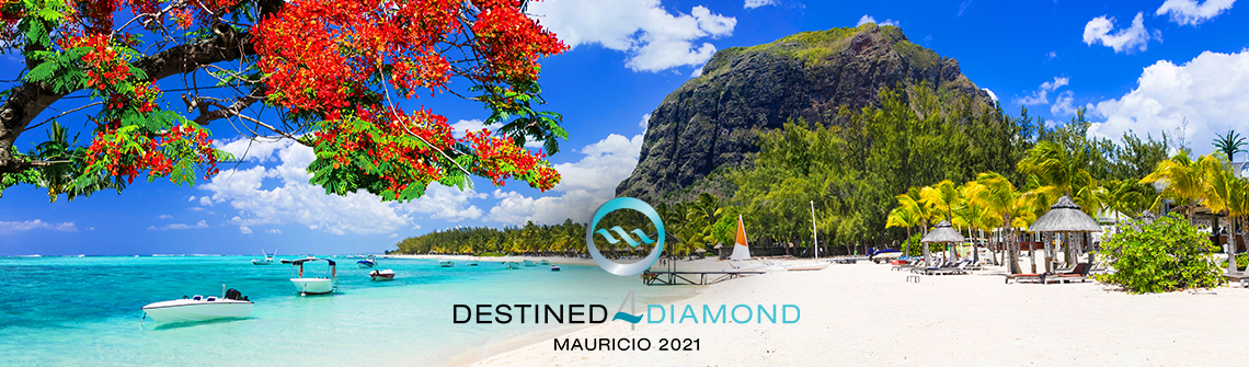 Destined 4 Diamond: 2021 de Max